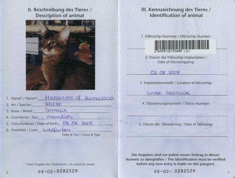 How To Get A Dog Passport